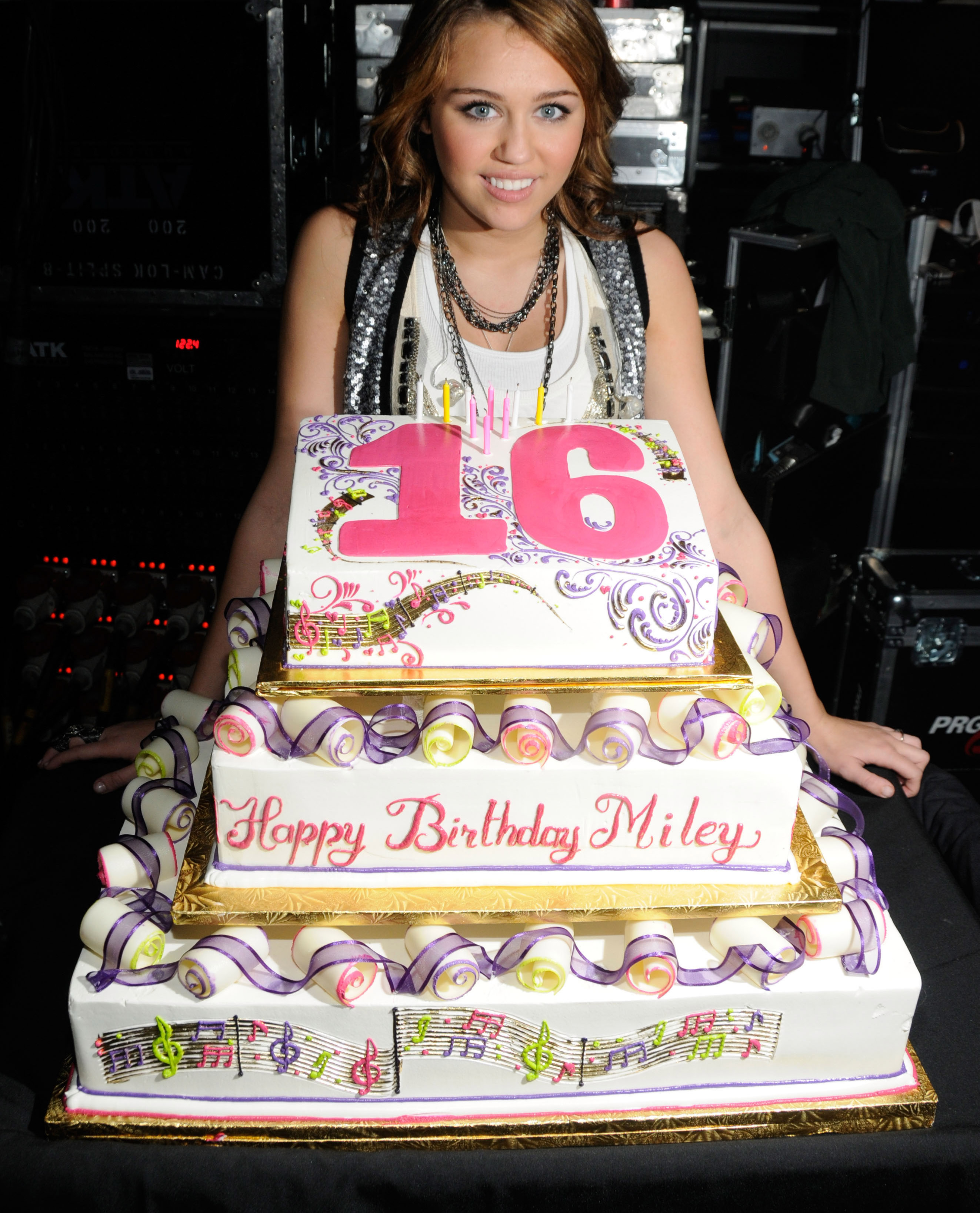 Terrific 12 Insane Cakes Your Favorite Stars Had For Their 16Th Birthdays Funny Birthday Cards Online Inifodamsfinfo