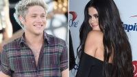 selena-gomez-niall-horan-dating