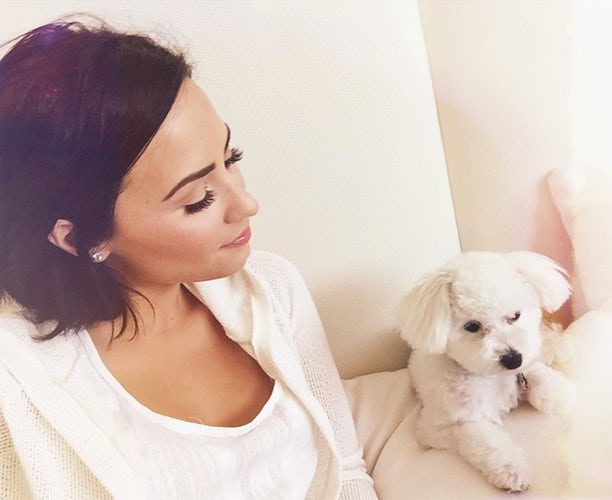 demi and buddy lovato