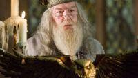 dumbledore-harry-potter