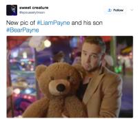 liam-bear-baby5
