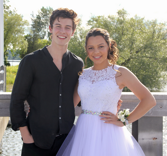 shawn mendes and aaliyah