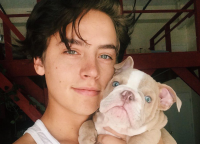 cole-sprouse-puppy