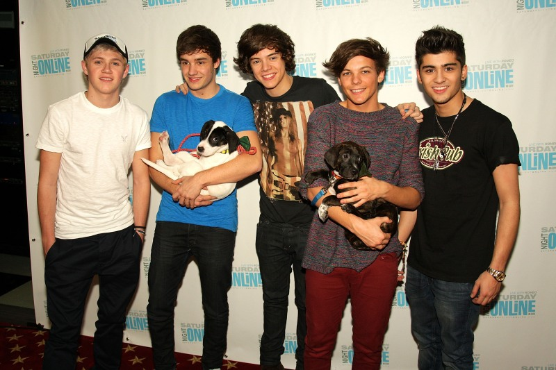 one-direction-puppies