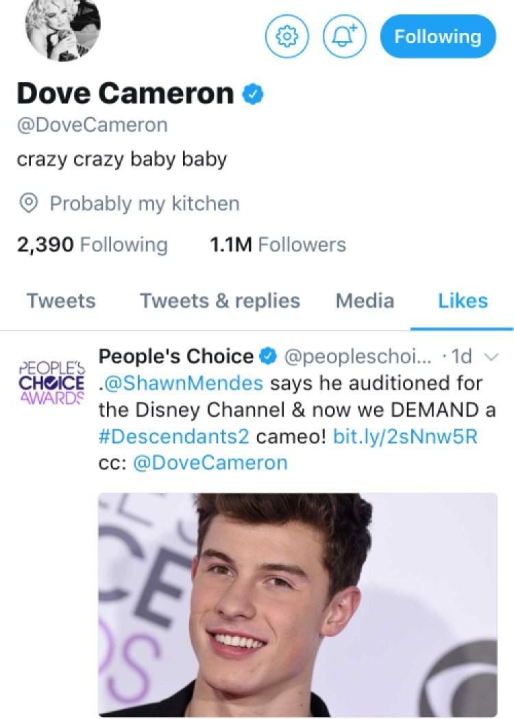 dove cameron shawn mendes tweet