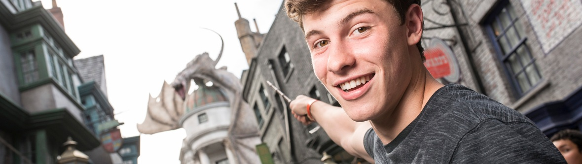 shawn mendes wizard