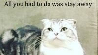 taylor-swift-funny-meredith-1