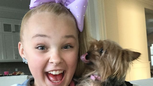 Jojo Siwa S Dog Bowbow Name Facts And More About The Pup