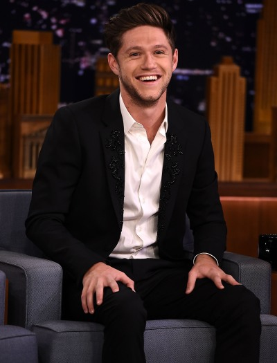 Niall Horan Slams Fan Who Says Hes Fake Dating Hailee