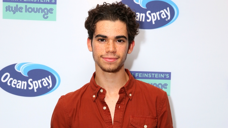 Are cameron boyce and brenna still dating 2018