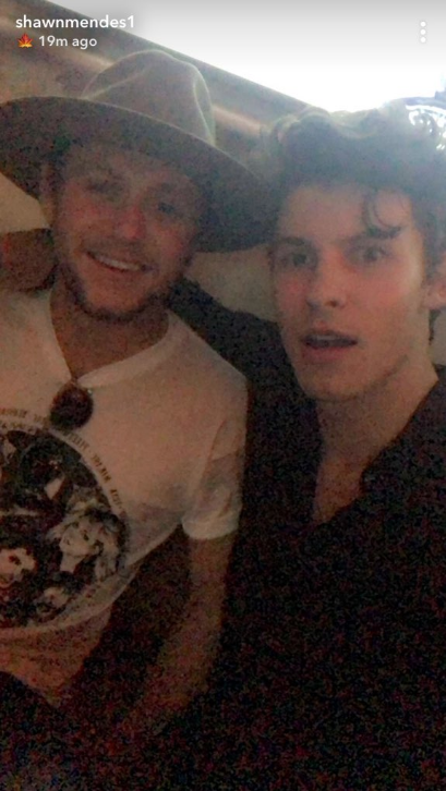 Niall Horan Shawn Mendes Hanging Out