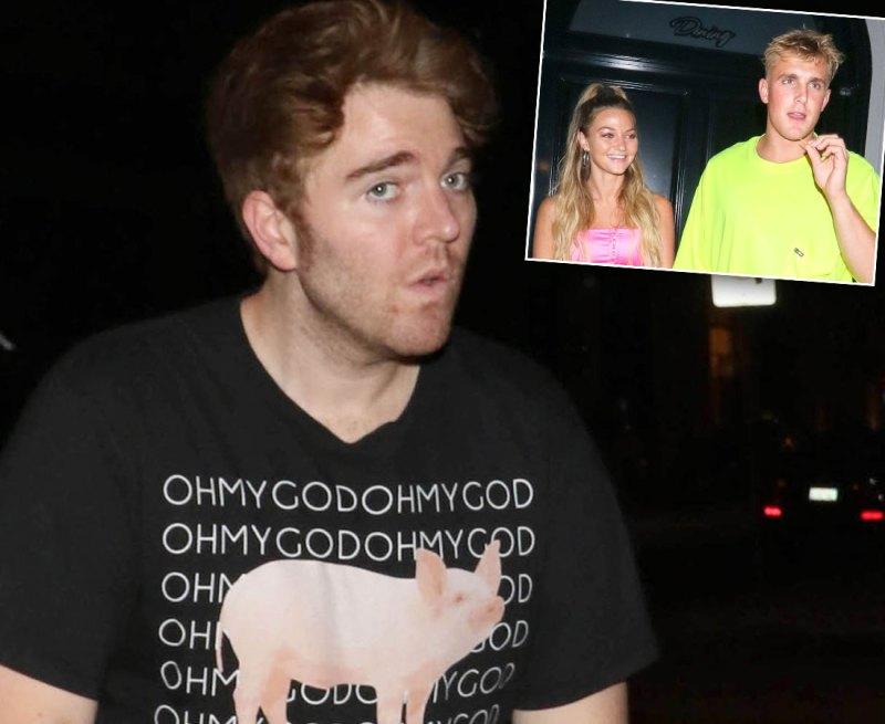 Shane Dawson Another Docuseries Jake Paul Erika Costell Breakup