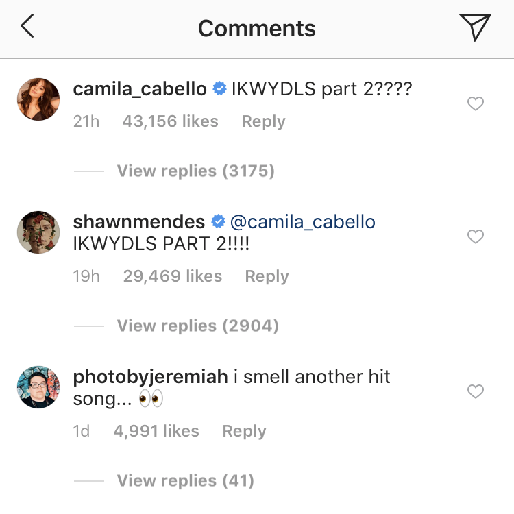 Camila Cabello Shawn Mendes Instagram Comments