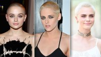 Celebrities that shaved their heads for roles