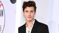 Shawn Mendes Accidentally Likes Offensive Tweet