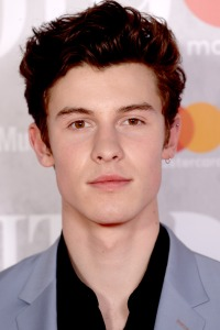 Shawn Mendes earring