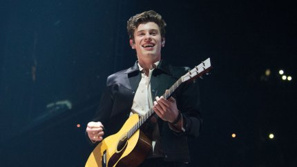 Shawn Mendes falls off stage