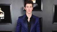 Shawn Mendes Health Update