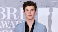 Shawn Mendes Sick