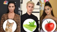 Celebrity Allergies