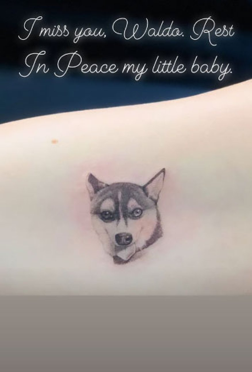 Joe Jonas Sophie Turner Tattoo Dog