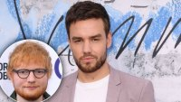 Liam payne New Single Ed Sheeran