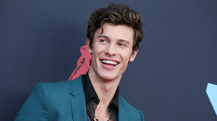 shawn mendes foundation