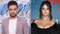 Fans Accuse Liam Payne of Copying Selena Gomez With Stack It Up