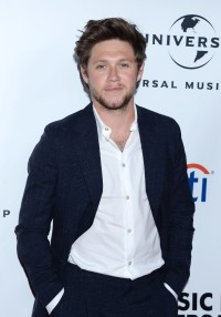 Niall Horan One Direction Reunion