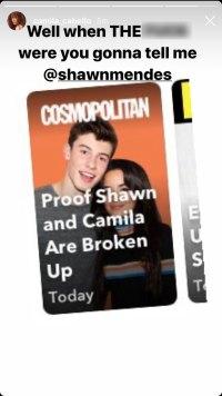 Shawn Mendes Camila Cabello Address Breakup Rumors