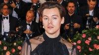 Harry Styles Testifies Against Stalker
