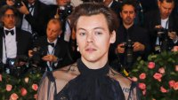 Harry Styles Testifies Against Stalker