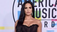 Demi Lovato First Interview In Over a Year Past Struggles