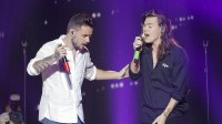 Liam Payne Wants To Collab With Harry Styles
