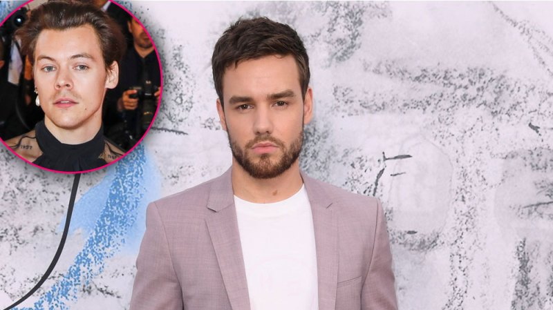Fans Are Not Happy After Liam Payne Shaded The Way Harry Styles Dresses