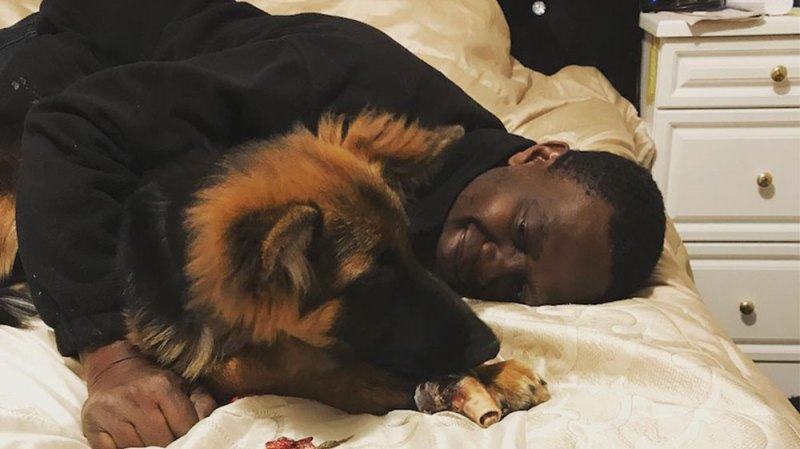 YouTuber Deji Begs For Help After His Dog Is Sentenced To Be Put Down For Biting Elderly Woman