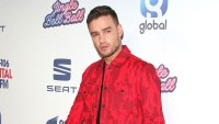 Fans Slam Liam Payne's New Song