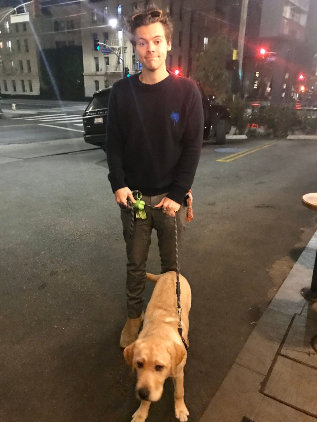 Harry Styles Watched A Stranger's Dog While The Owner Went Inside A Restaurant To Pick Up Food