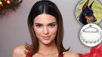 Kendall Jenner Slammed For Prong Collar Dog