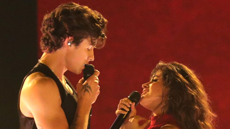Camila Cabello Says She And Shawn Mendes Will Strip Down To Their Underwear If They Win A Grammy
