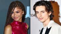 Fans Are Convinced Timothée Chalamet And Zendaya Are Dating After They Hit Up Bed, Bath & Beyond Together