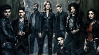 Shadowhunters' Cast: Where Are They Now?