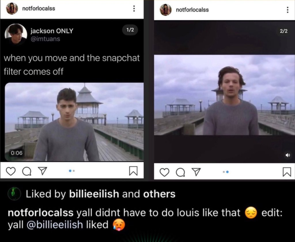 Billie Eilish Liked One Direction Shady Picture
