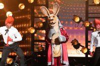 Masked Singer Final Contestants Clues Celebrities