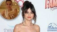 Selena Gomez New Puppy Daisy