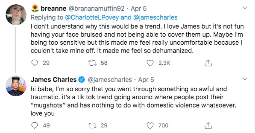 James Charles Slammed for mugshot tiktokt challenge