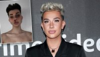 James Charles Slammed for mugshot tiktokt challenge