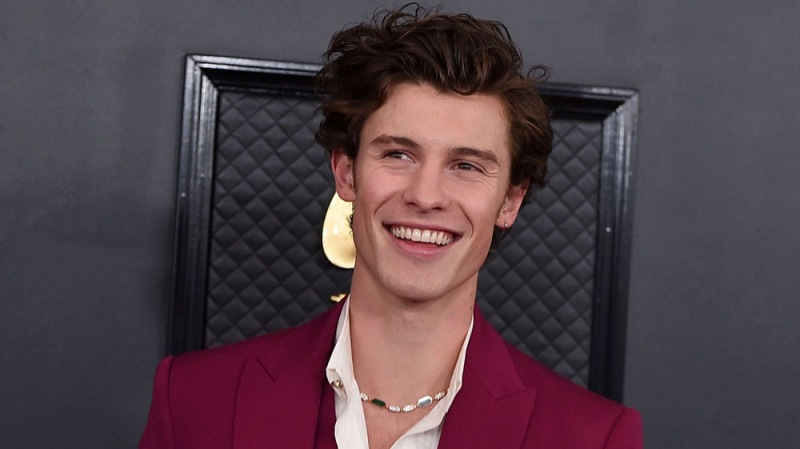 Shawn Mendes Is Inviting Fans To Appear In His Next Music Video — Here's How You Can Take Part