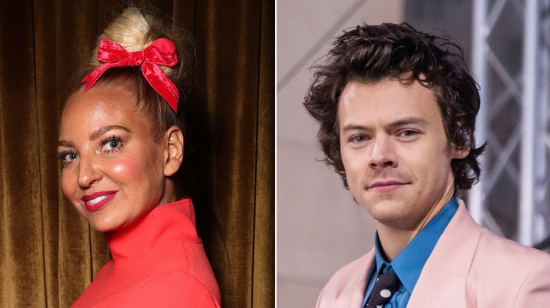 Sia Recounts The Time Harry Styles Flirted With Her When He Was Only 21 Years Old