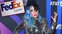 Fed Ex Responds To False Claims About Lady Gaga Driving Recklessly While Delivering Packages